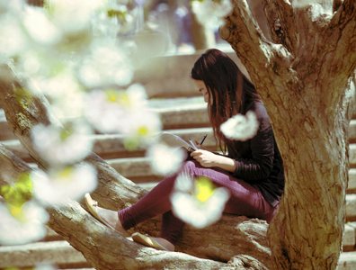 Photo of girl reading in a tree on campus